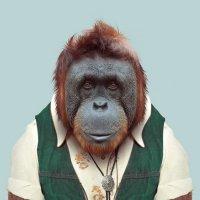 Приматы7.jpg